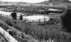 The Bayshore yard in 1983, with train traffic. Courtesy Reg McGovern.